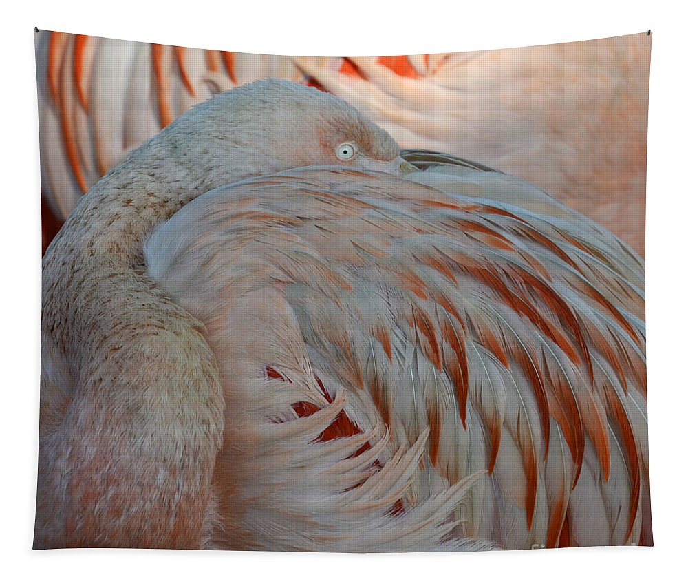 Pink Flamingo Tapestry featuring the photograph Pink Flamingo 7 by Bob Christopher