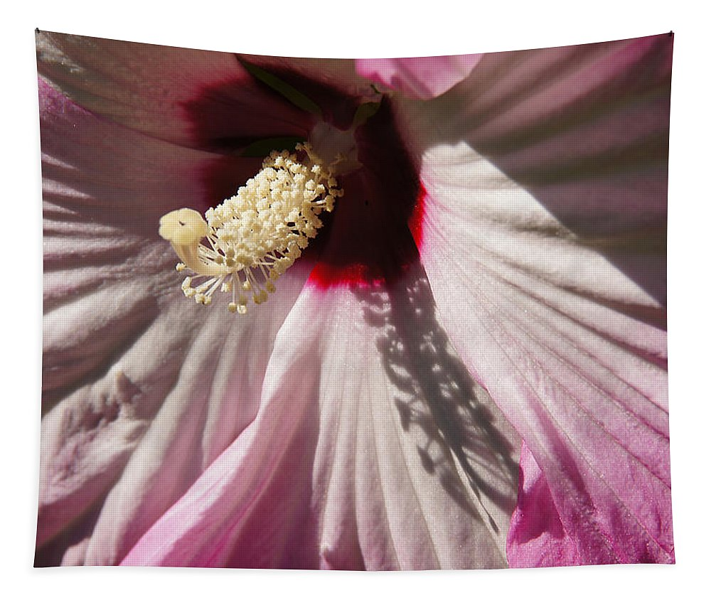 Pink Tapestry featuring the photograph Pink by Mick Anderson