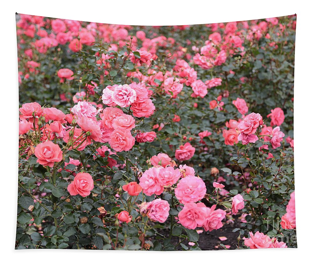 Roses Tapestry featuring the photograph Pink Roses Canvas by Carol Groenen