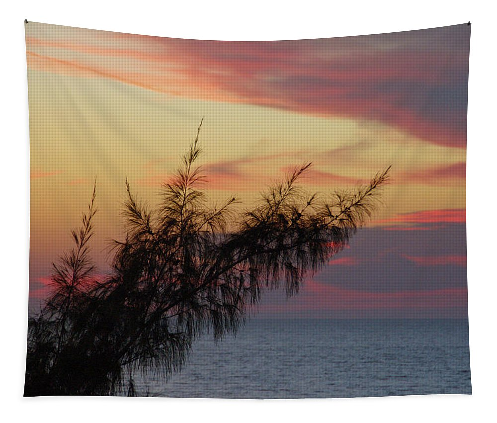Beach Tapestry featuring the photograph Pink Sunset by Aimee L Maher ALM GALLERY