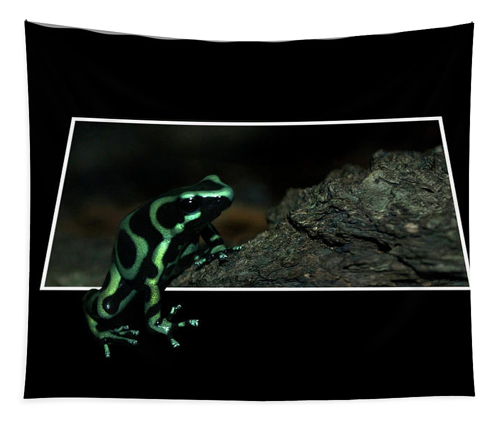 Out Of Bounds Tapestry featuring the photograph Poisonous Green Frog 02 by Thomas Woolworth