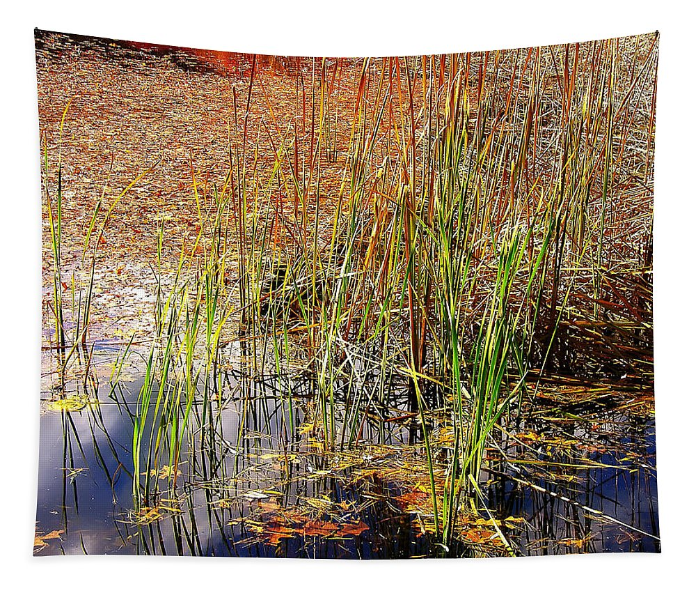 Pond Tapestry featuring the photograph Pond And Rushes by Mary Lane