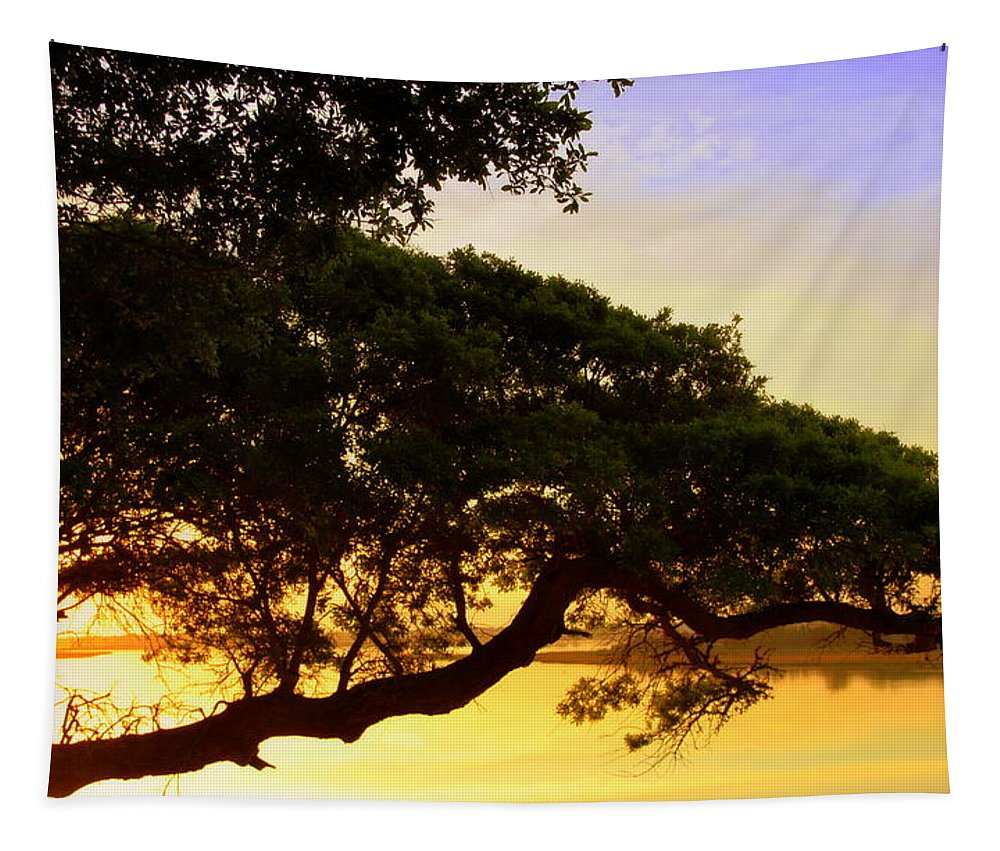 Trees Tapestry featuring the photograph Prayer To Remain by Karen Wiles