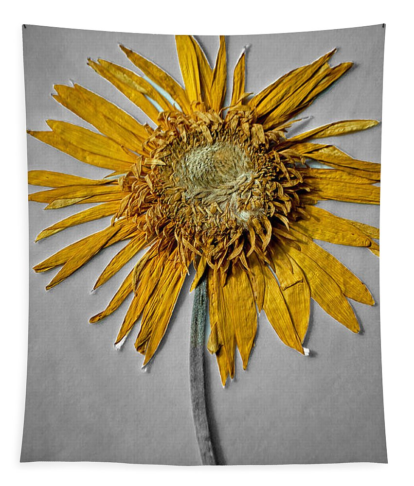 Pressed Tapestry featuring the photograph Pressed Sunshine Flower by Tikvah's Hope