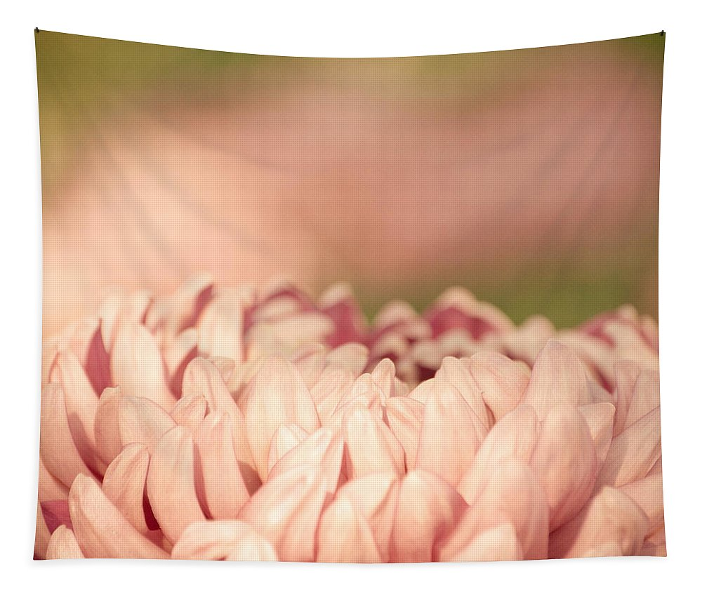 Dahlia Tapestry featuring the photograph Pretty Pastels by Trish Tritz