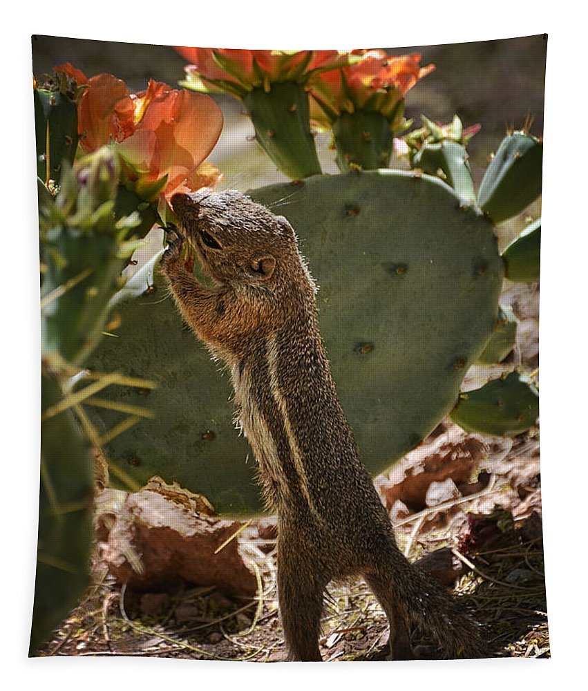 Antelope Ground Squirrel Tapestry featuring the photograph Prickly Lunch by Saija Lehtonen