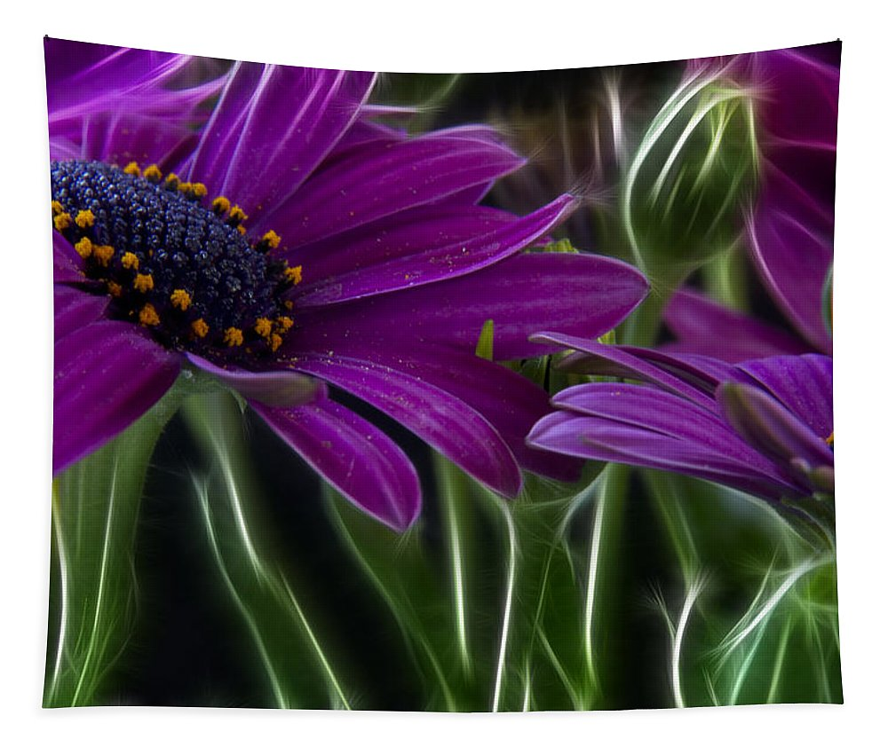 Abstract Tapestry featuring the photograph Purple Daisy by Stelios Kleanthous