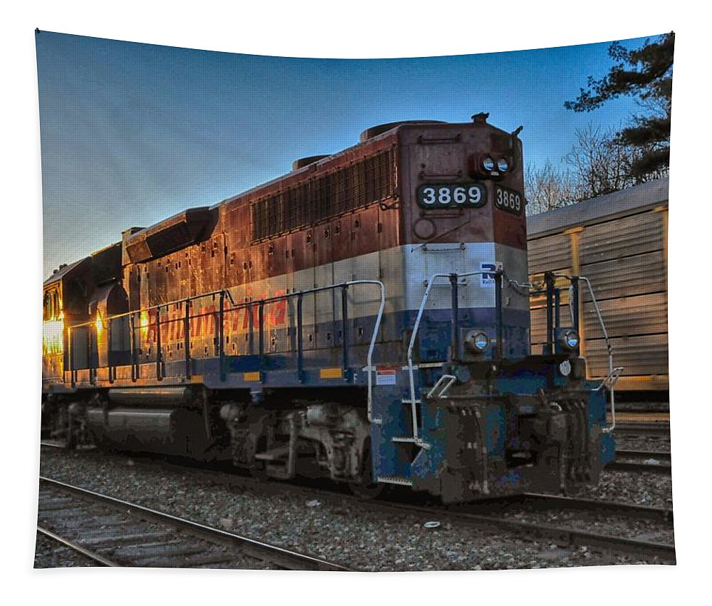 Rail Tapestry featuring the photograph Rail America's 3869 by Mike Martin