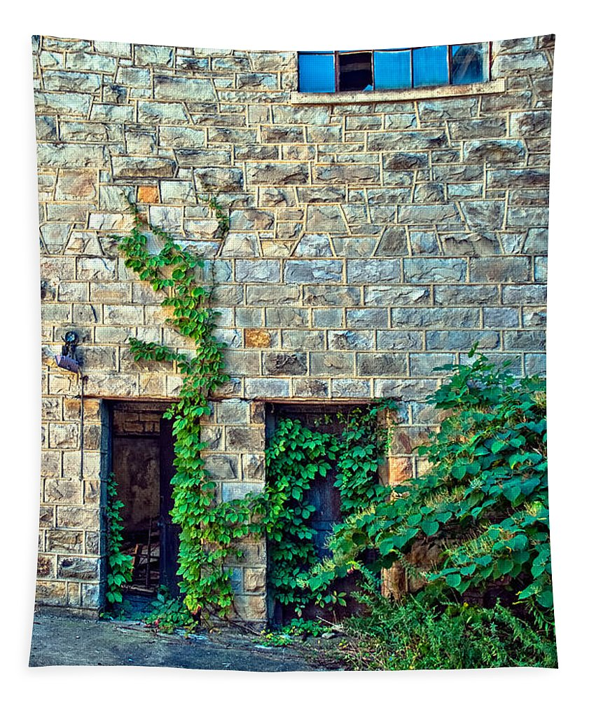 West Virginia Tapestry featuring the photograph Reclaiming Stonehaven by Steve Harrington