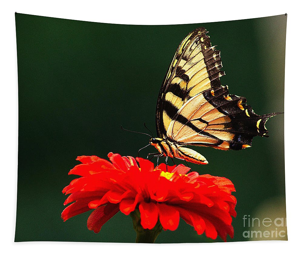 Bug Tapestry featuring the photograph Red Flower And Butterfly by Nick Zelinsky