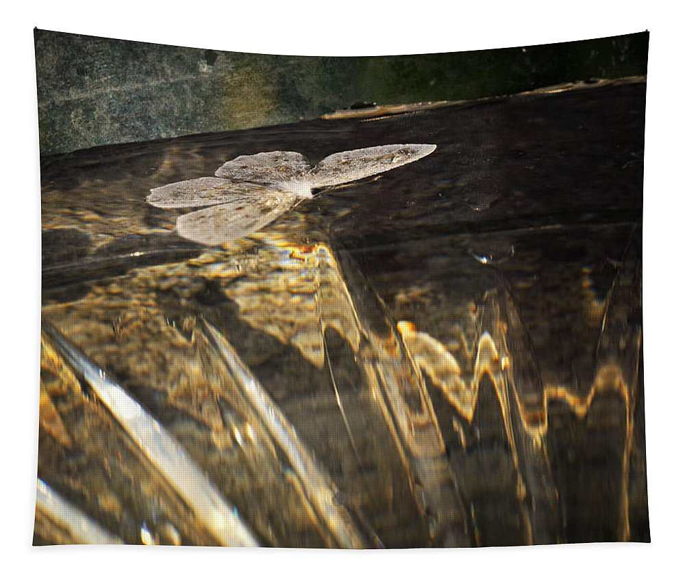 Reflectons Tapestry featuring the photograph Repetition by Susan Capuano