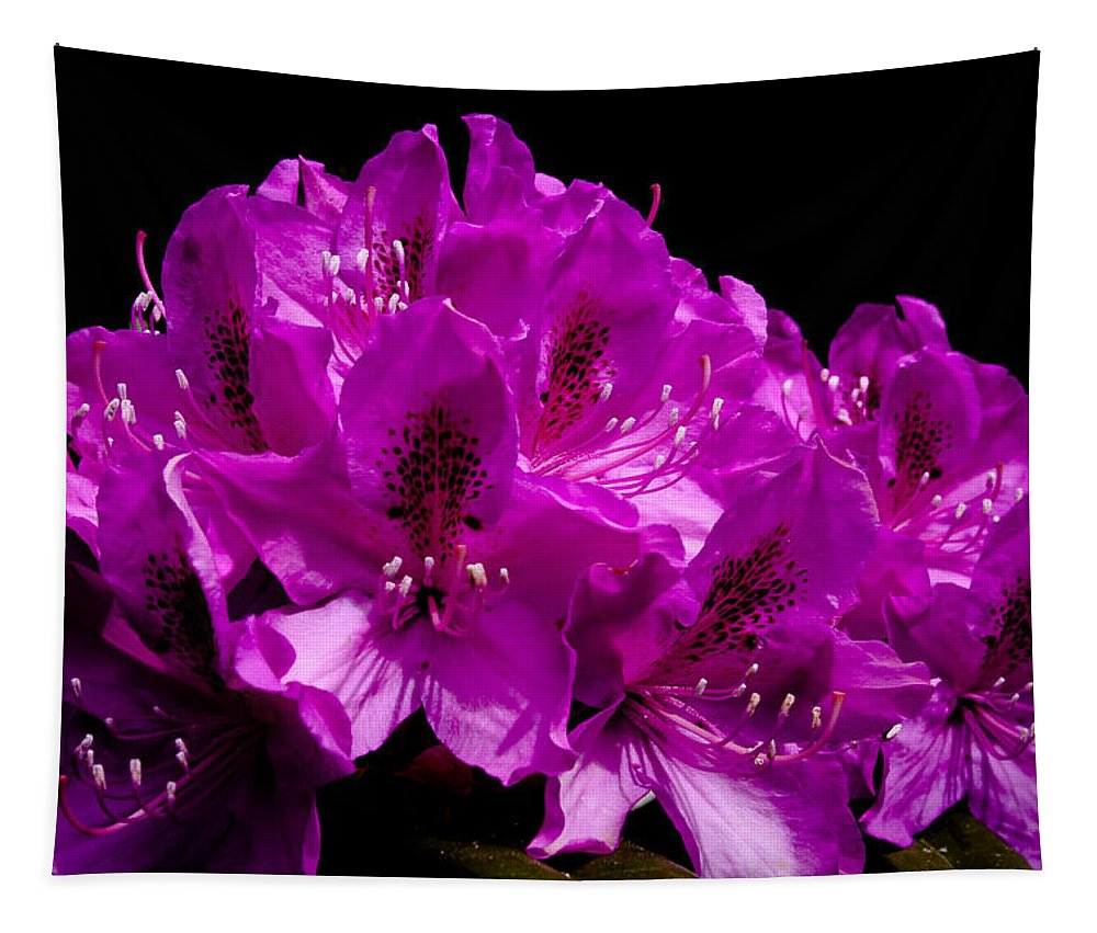 Rhododendron Tapestry featuring the photograph Rhododendron by David Patterson