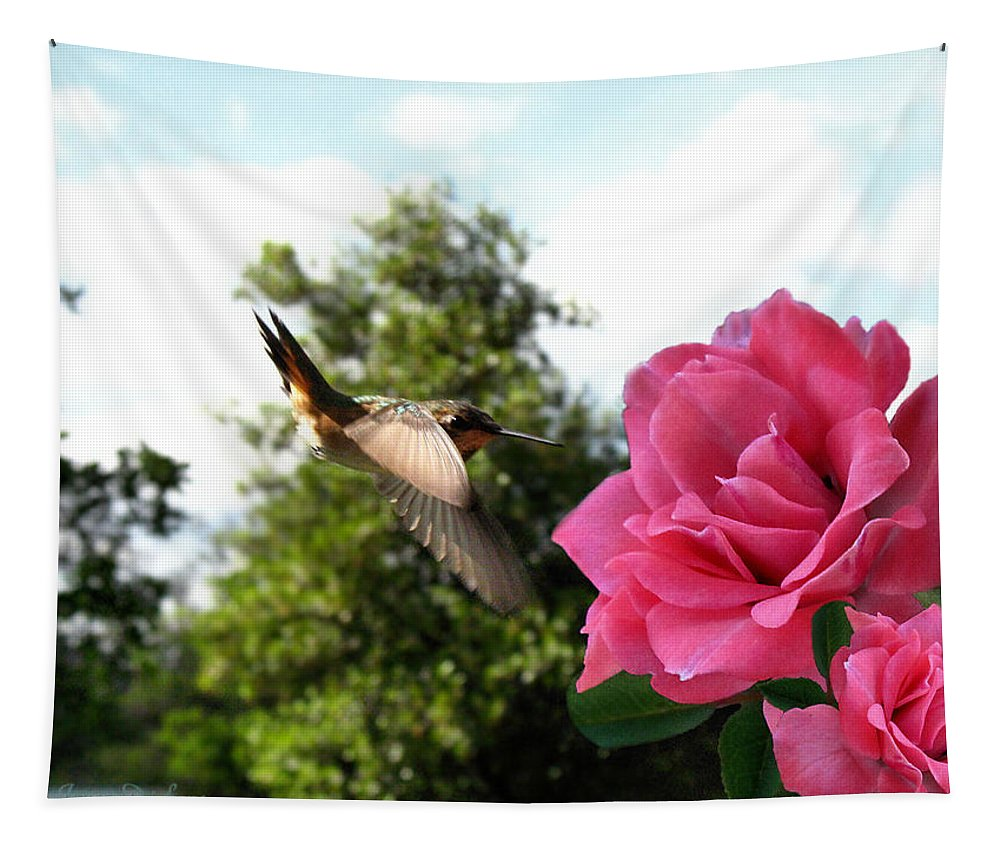 Rufous Tapestry featuring the photograph Rose And Rufous by Joyce Dickens