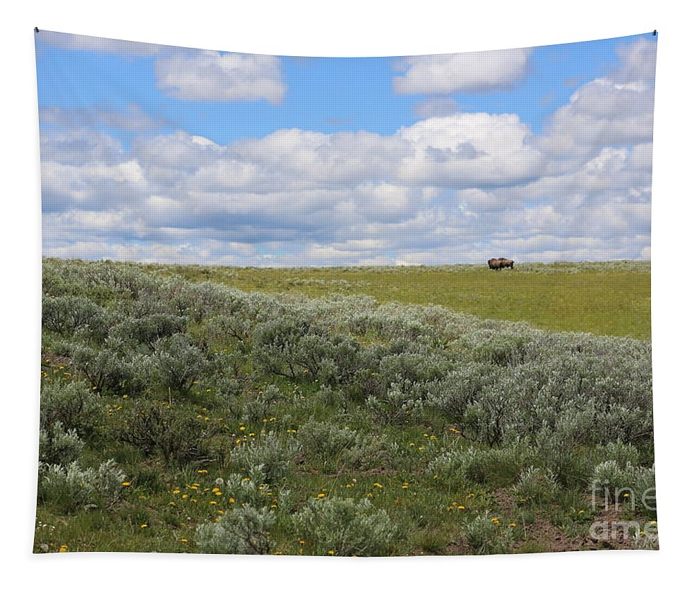 Sagebrush Tapestry featuring the photograph Sagebrush And Buffalo by Carol Groenen