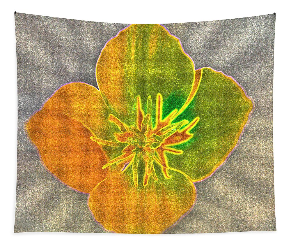 Sand Flower Tapestry featuring the photograph Sand Flower by Mitch Shindelbower