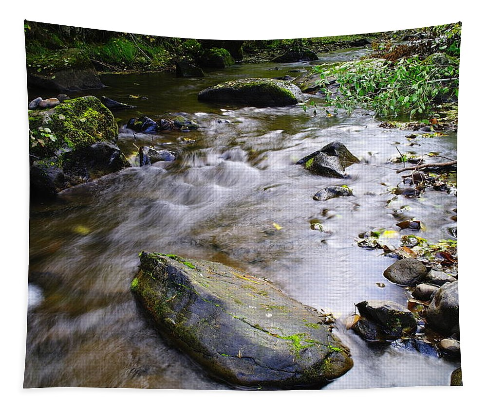 Creeks Tapestry featuring the photograph Satus Creek In Autumn by Jeff Swan