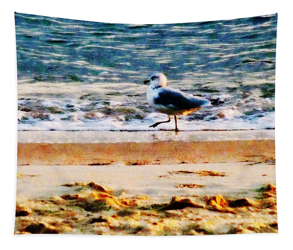 Bird Tapestry featuring the photograph Seagull On Virginia Beach At Dawn by Susan Savad