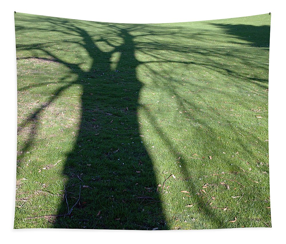 Shadow Tapestry featuring the photograph Shadow Of A Tree On Green Grass by Matthias Hauser