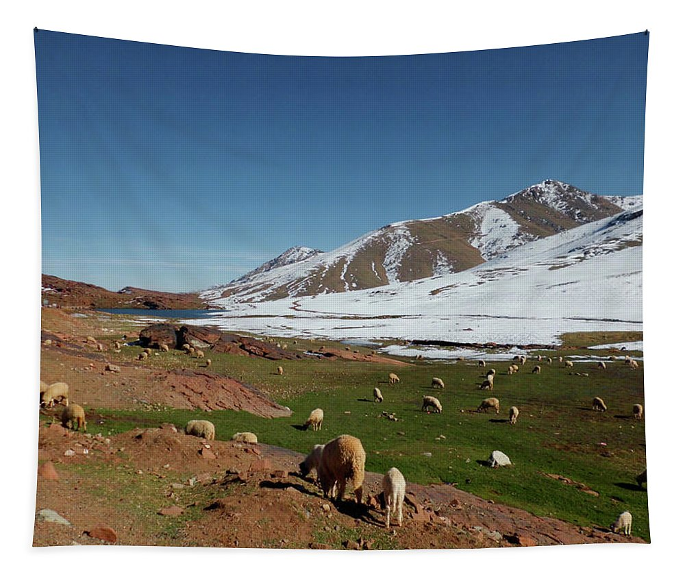 Travel Tapestry featuring the photograph Sheep In The Atlas Mountains 02 by Miki De Goodaboom