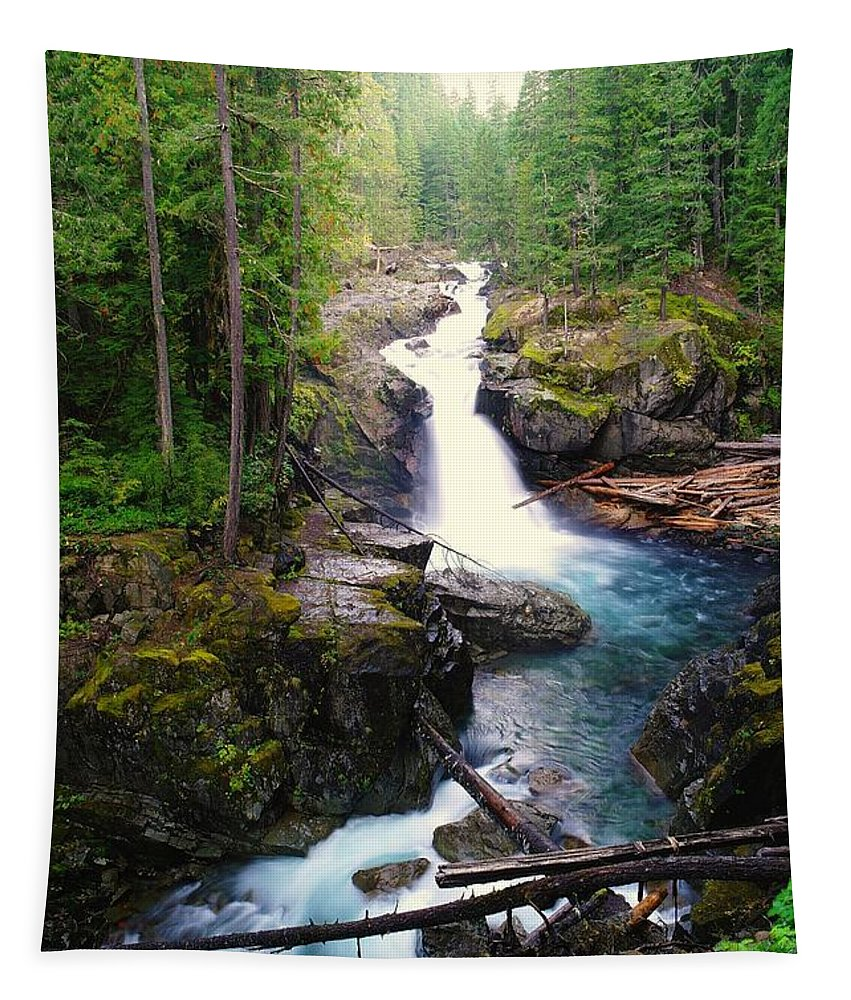 Water Tapestry featuring the photograph Silver Falls Full View by Jeff Swan