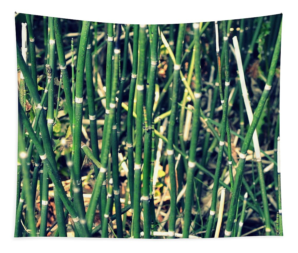 Nautical Tapestry featuring the photograph Snake Grass On The Beach by Michelle Calkins