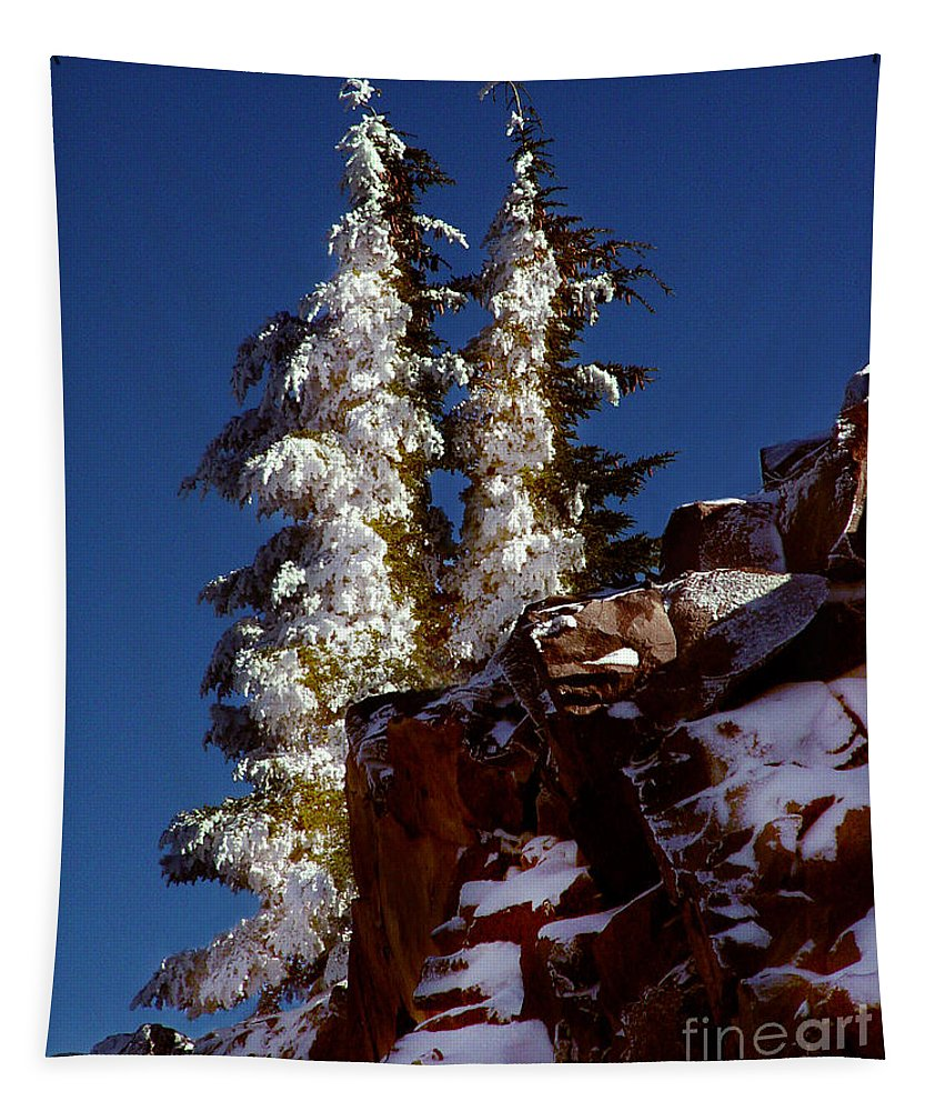 Snow Tipped Trees Tapestry featuring the photograph Snow Tipped Trees by Peter Piatt