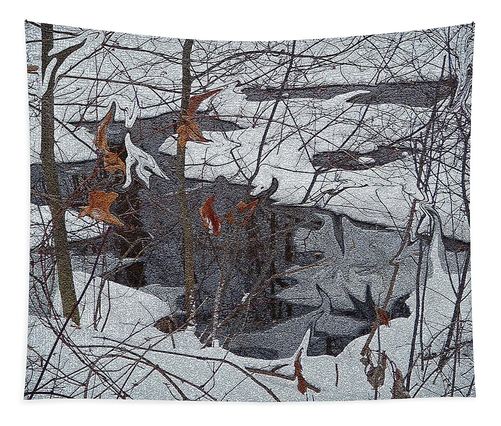 Winter Landscape Tapestry featuring the photograph Snowy Pond by Aimee L Maher ALM GALLERY