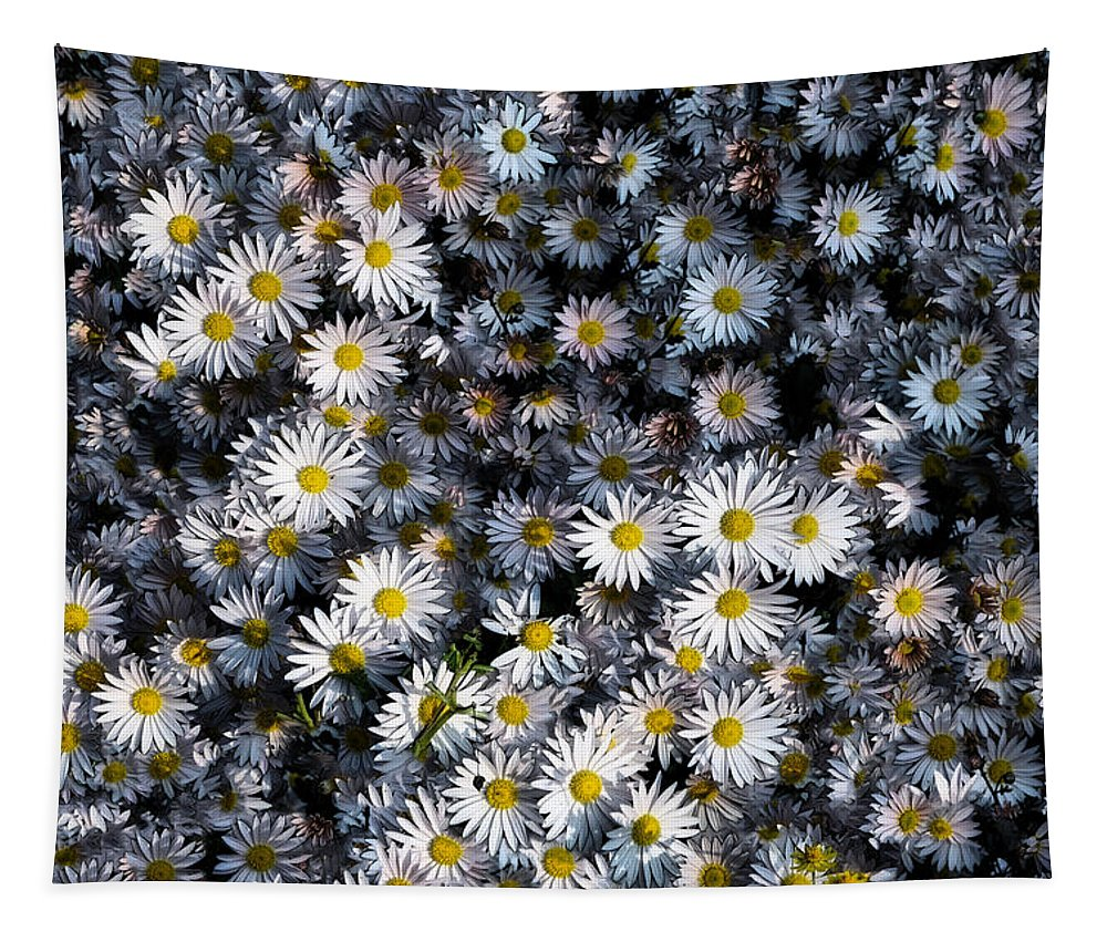 Daisy Tapestry featuring the photograph So Many Daisies by Bill Cannon