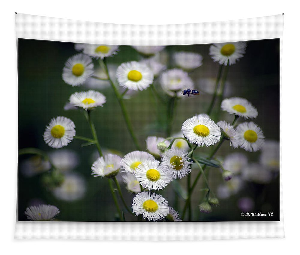 2d Tapestry featuring the photograph So Many Flowers So Little Time by Brian Wallace