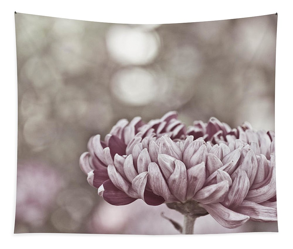 Flower Tapestry featuring the photograph Sometimes I Wonder by Trish Tritz