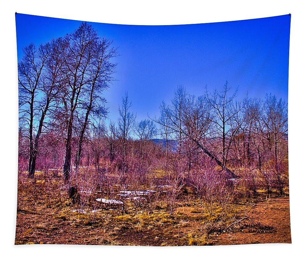 Denver Tapestry featuring the photograph South Platte Park Landscape by David Patterson