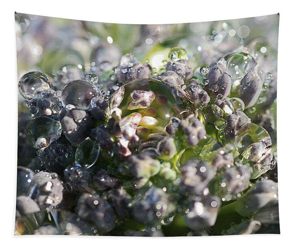 Water Drops Tapestry featuring the photograph Spirit Of Broccoli by Susan Capuano