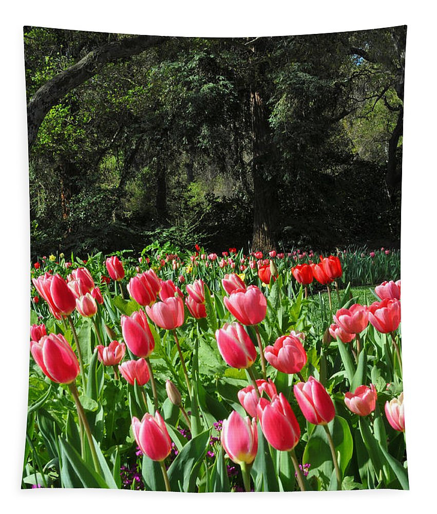 Tulips Tapestry featuring the photograph Spring Tulips 1 Vertical by Lynn Bauer