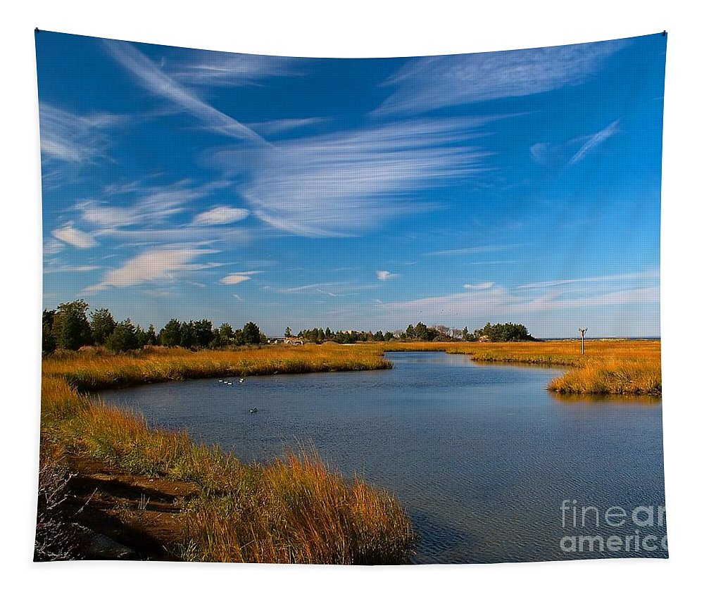 Stream Tapestry featuring the photograph Still Waters by Nick Zelinsky