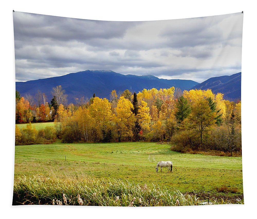 Landscape Tapestry featuring the photograph Sugar Hill Road New Hampshire by Nancy Griswold