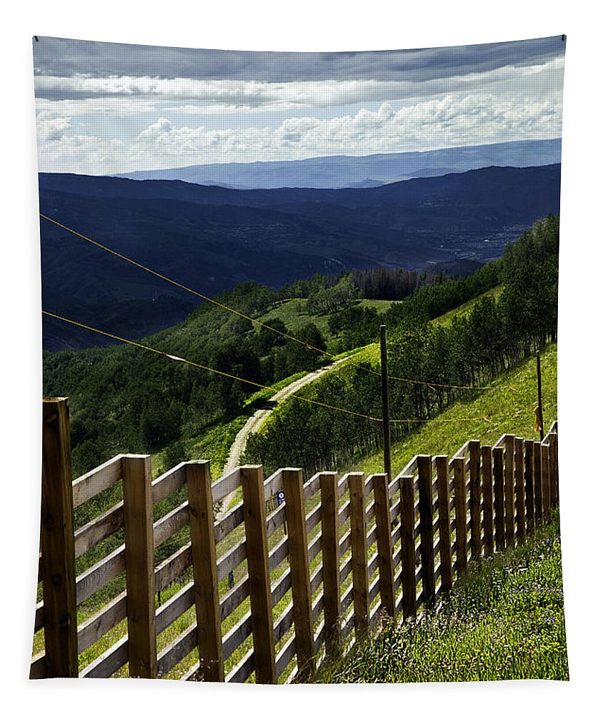 Vail Tapestry featuring the photograph Summer In Vail - Colorado by Madeline Ellis