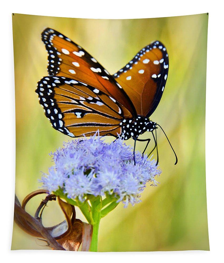 Queen Butterfly Tapestry featuring the photograph Summer Spirit by Saija Lehtonen