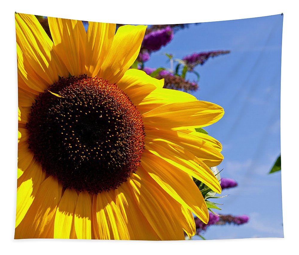 Summer Tapestry featuring the photograph Summer Sunflower by Tikvah's Hope