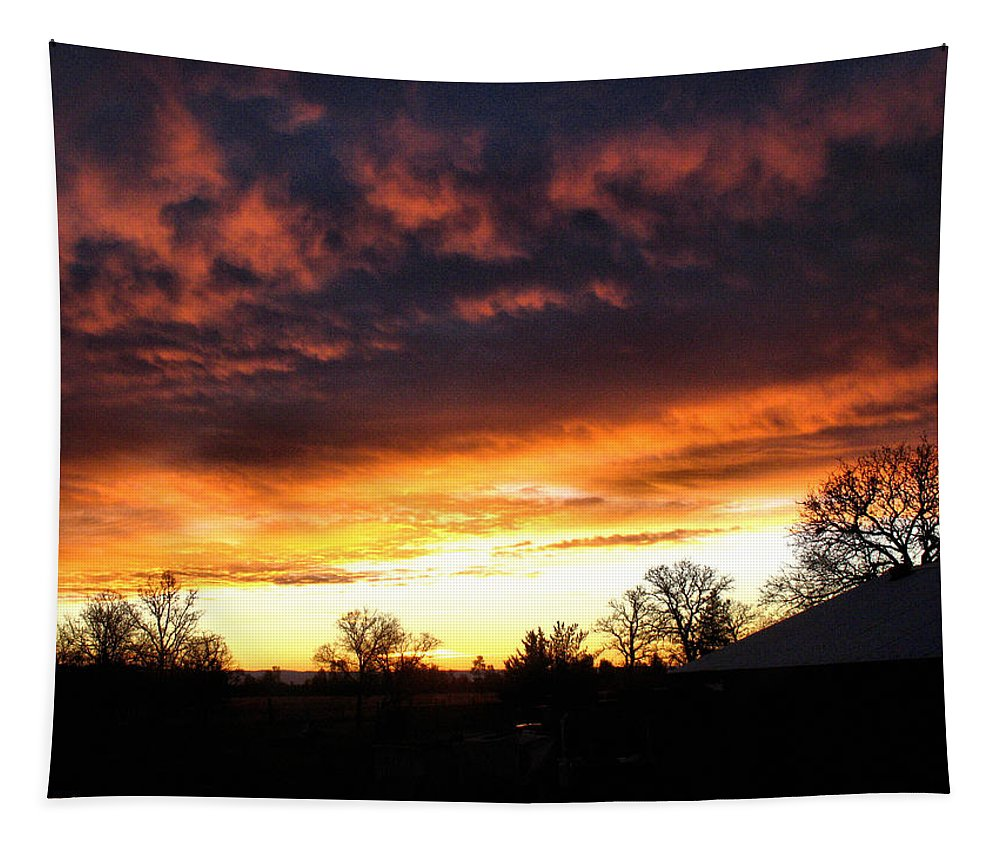 Sunrise Tapestry featuring the photograph Sunrise 01 05 12 by Joyce Dickens