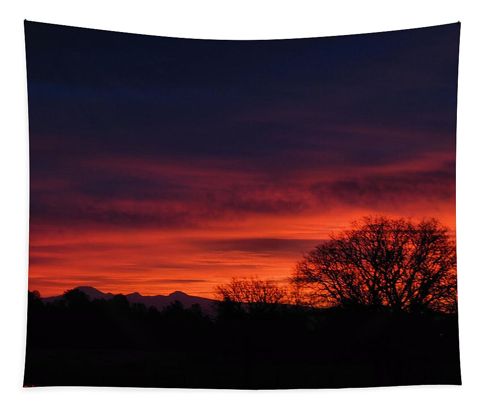 Sunrise Tapestry featuring the photograph Sunrise 01 10 12 by Joyce Dickens