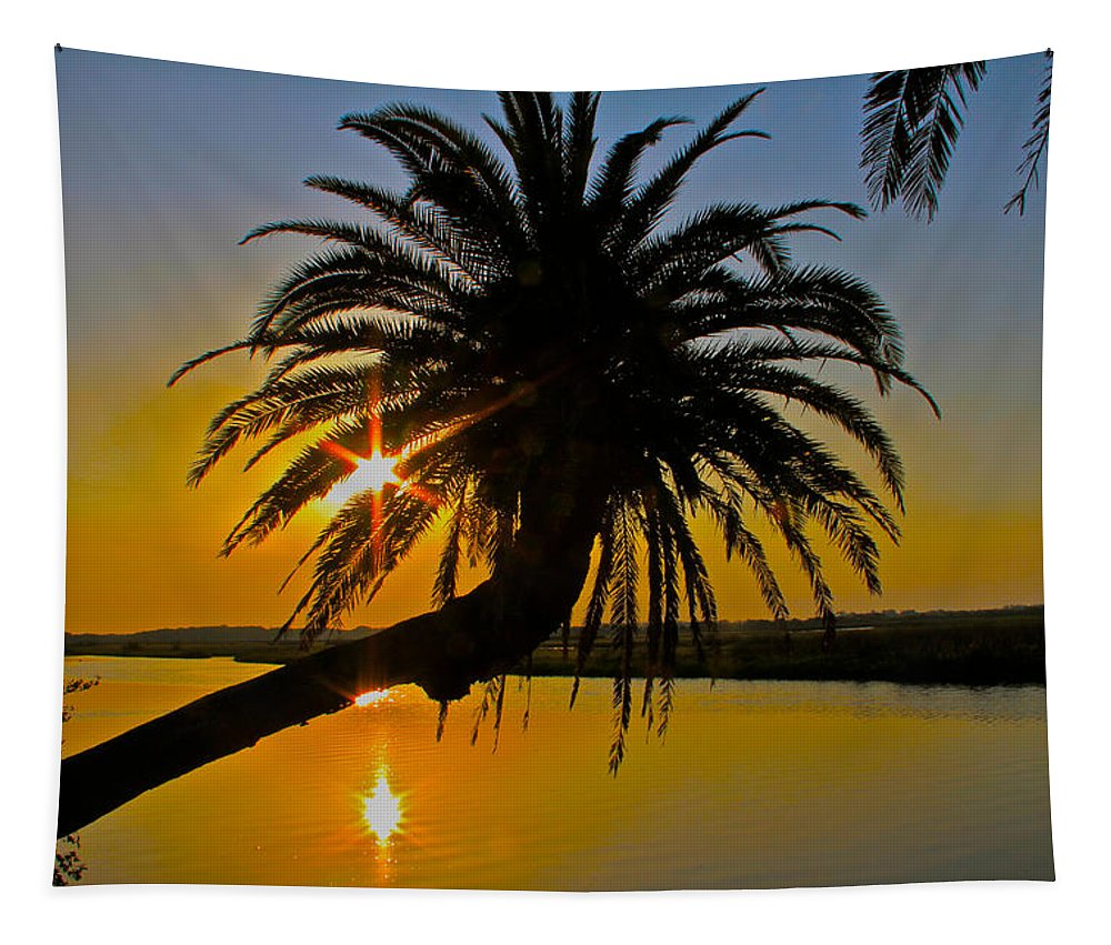 Loop Flagler Beach Palm Tree Sunrise Starburst Tapestry featuring the photograph Sunrise On The Loop by Alice Gipson