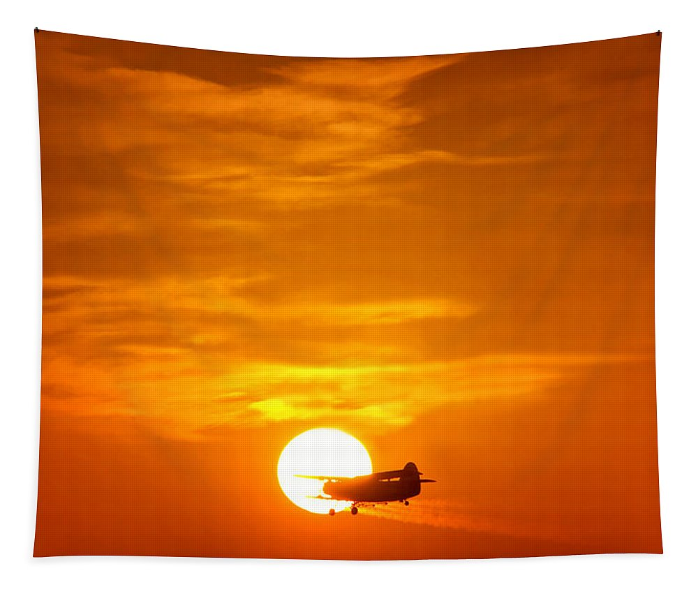 Sunset Tapestry featuring the photograph Sunset With Plane by Mary Lane