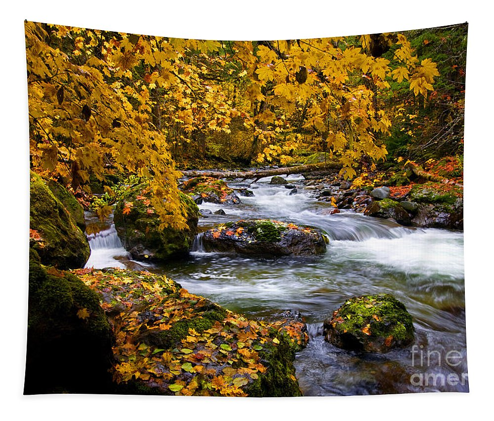 Canopy Tapestry featuring the photograph Surrounded By Autumn by Mike Dawson