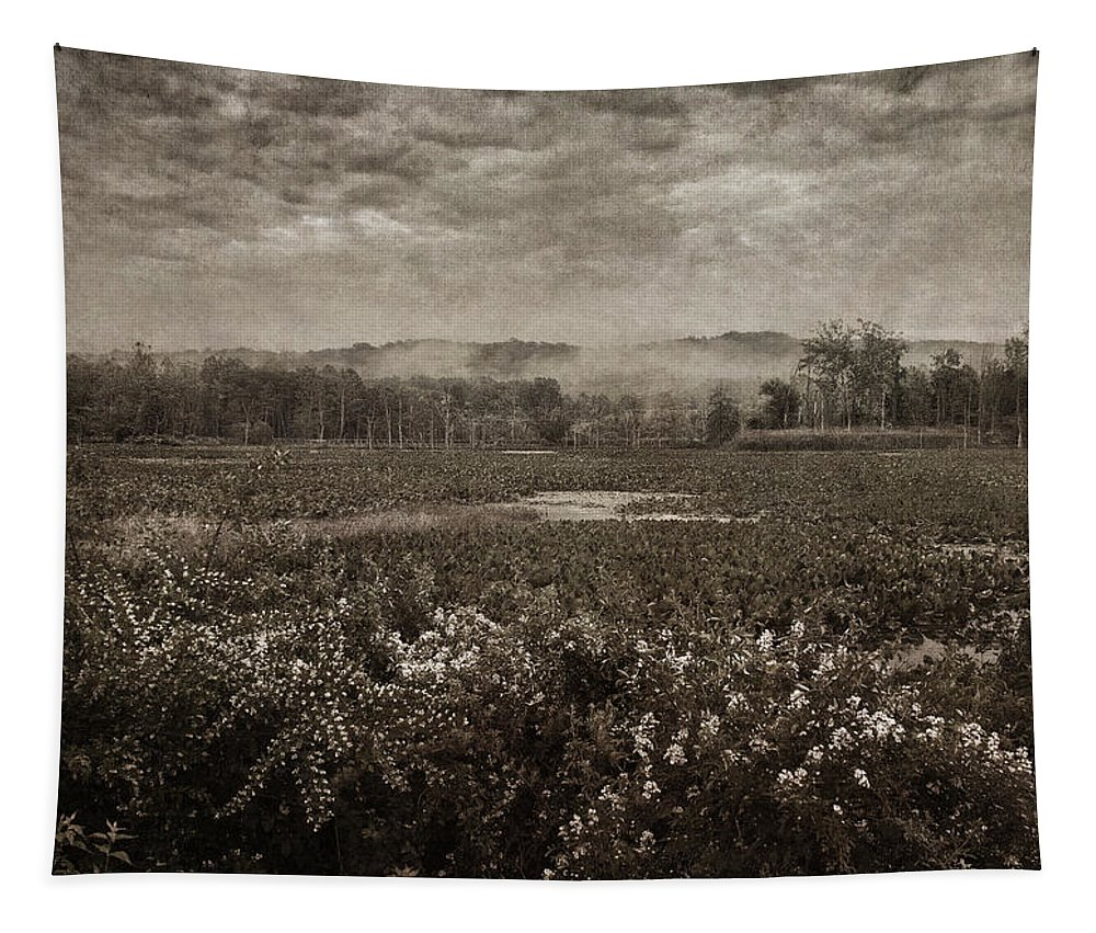 Marsh Tapestry featuring the photograph Suspended Over The Wetlands by Dale Kincaid