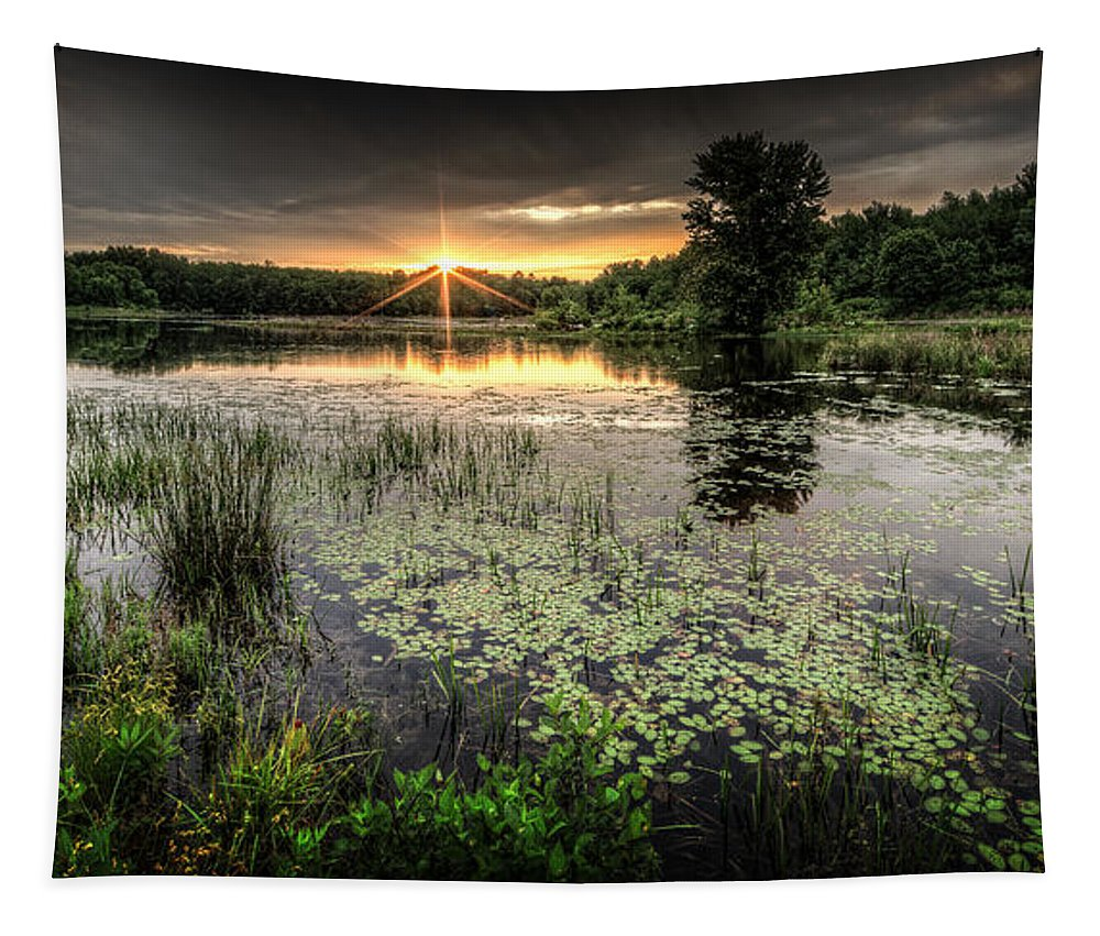 Sunrise Tapestry featuring the photograph Swamp Sunrise by Everet Regal