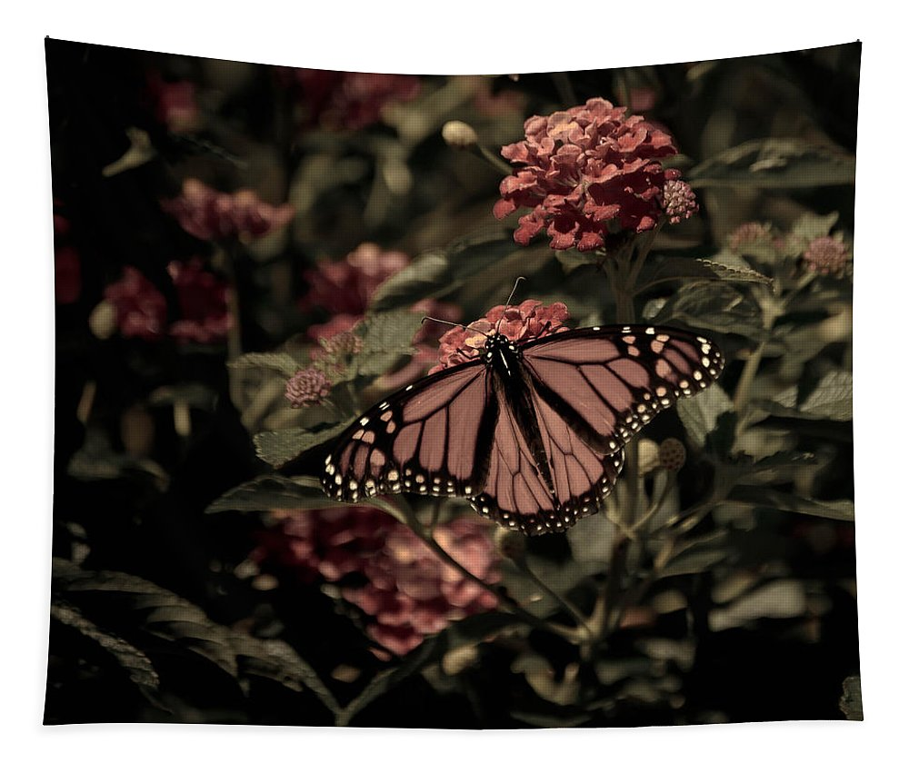 Butterfly Tapestry featuring the photograph Sweet Lantana by Trish Tritz
