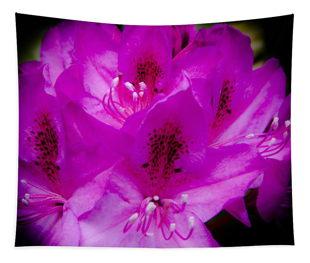 Rhododendron Tapestry featuring the photograph The Beautiful Rhododendron by David Patterson