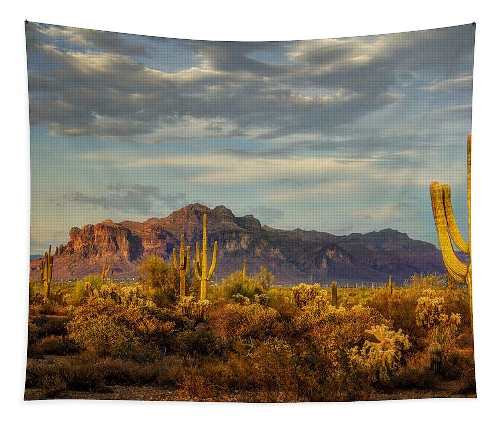 Sunset Tapestry featuring the photograph The Desert Golden Hour by Saija Lehtonen
