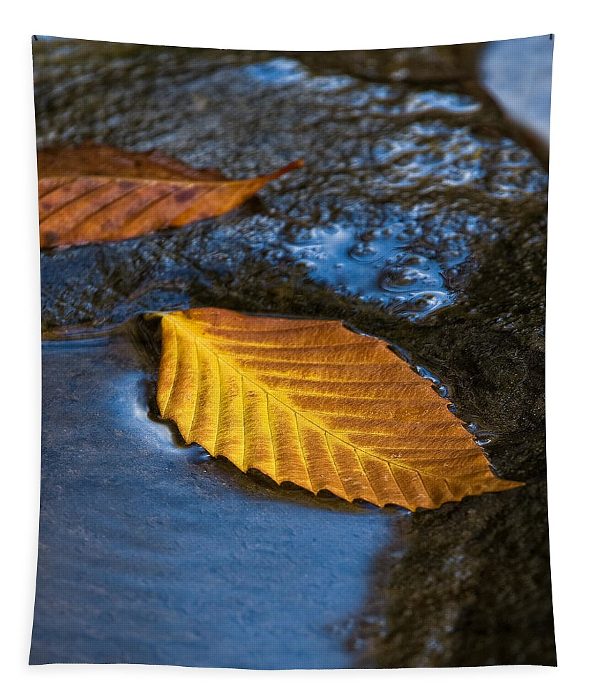 Water Tapestry featuring the photograph The Edge by Dale Kincaid