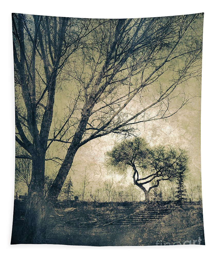 Tree Tapestry featuring the photograph The Forgetting Tree by Tara Turner